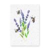 Groeikaart Lavendel