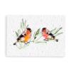 Bloeikaart Vogeltjes