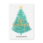 Groeikaart kerstboom